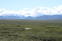 Alaska 2016 399