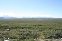 Alaska 2016 401